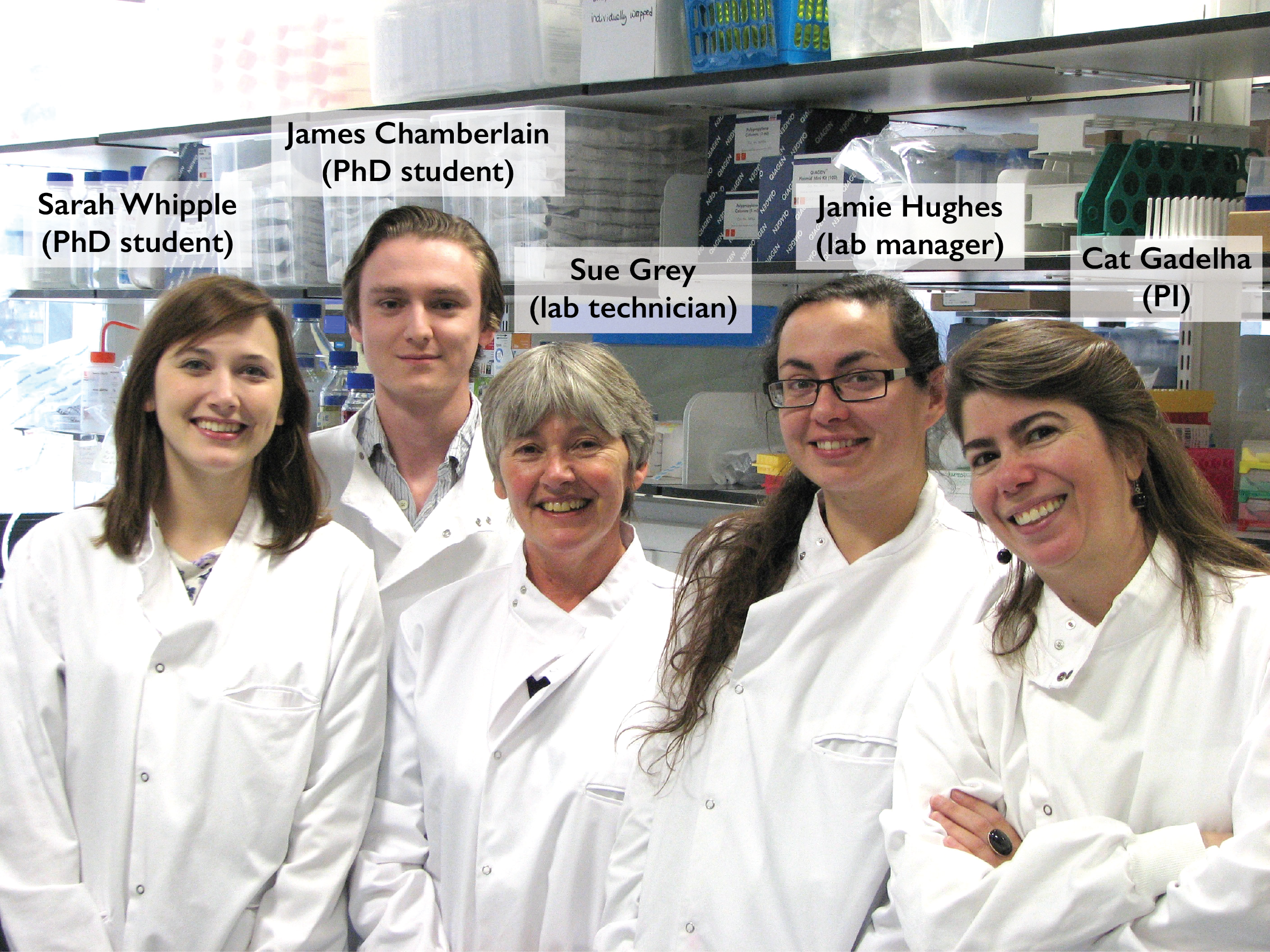 Gadelha Lab photo
